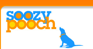 philly dog trainer behaviorist